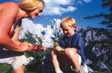 Genuss-Wandern bis 1.700 m, Alpin-Wandern bis 2.800 m auf die Gipfel der Niederen Tauern (Radstädter und Schladminger Tauern), der Hafnergruppe oder der Nockberge.