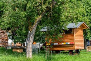 Sauschneiderhof - Wieland - Mariapfarr - Unsere Tiere Bienen
