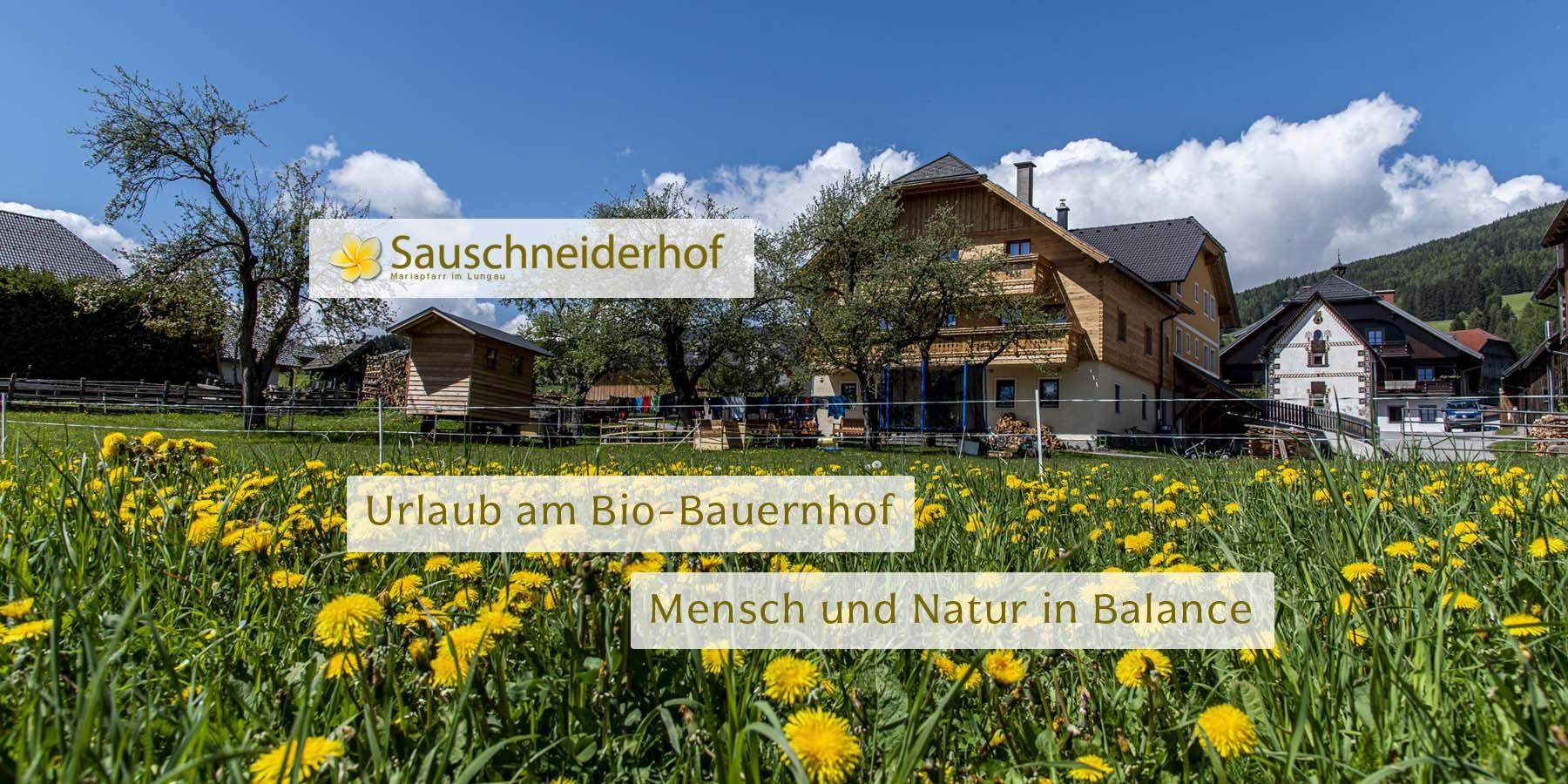 Sauschneiderhof - Wieland - Mariapfarr - Bio-Bauernhof