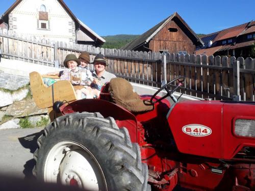 Am Bauernhof